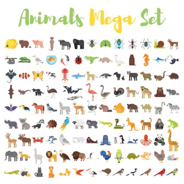 Best Animal Illustrations, Royalty.