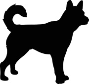 Cat Shadow Clipart.