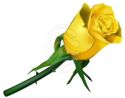 Clip art free yellow roses.