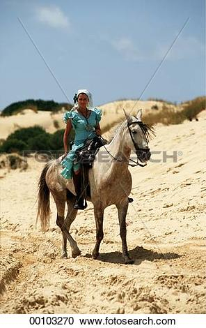 Stock Photography of andalusians, Andalusian, andalusian, afield.