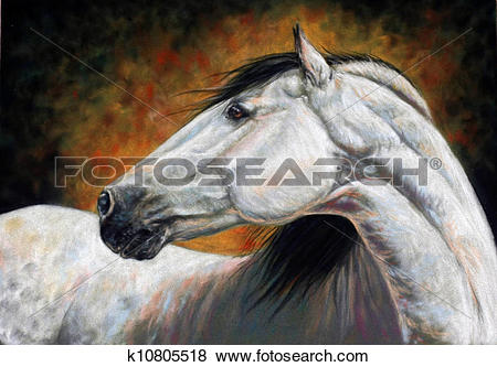 Stock Illustration of Andalusian horse portrait k10805518.