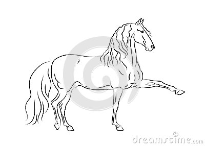 Andalusian Horse In Motion Royalty Free Stock Photo.
