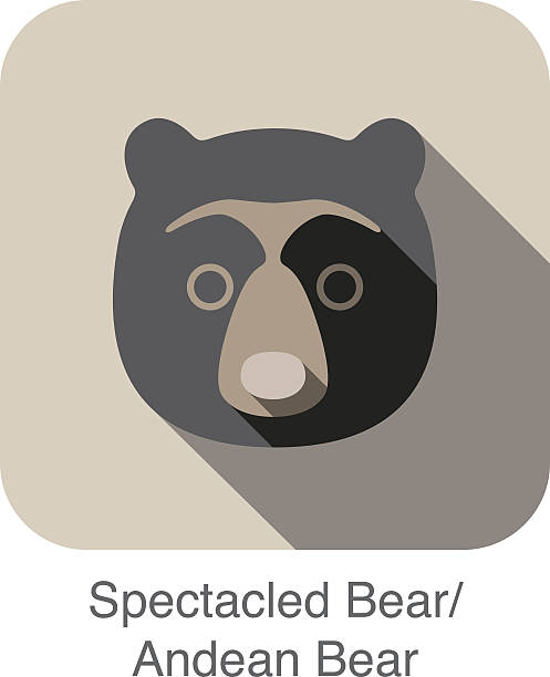 Andean Bear Clip Art, Vector Images & Illustrations.