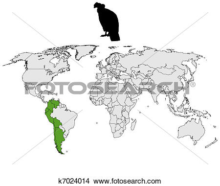 Clipart of Andean Condor distribution k7024014.