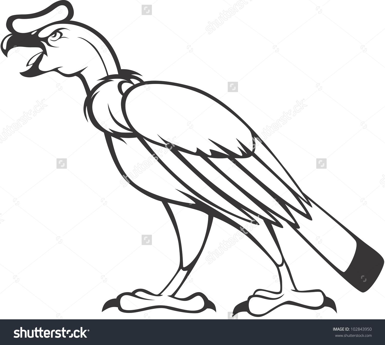 Showing post & media for Cartoon andean condor.