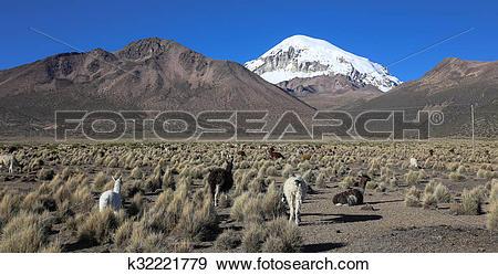Andean landscape clipart #18