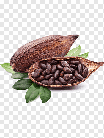 Chocolate liquor cutout PNG & clipart images.