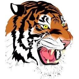 Newton North Tigers on Twitter: \
