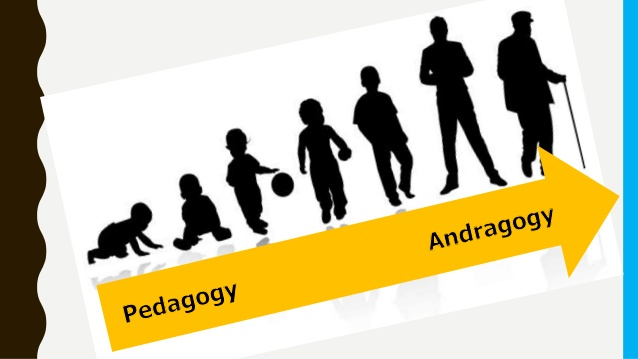 Moving from Pedagogy to Andragogy.