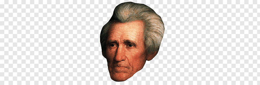 Man's face illustration, Andrew Jackson free png.