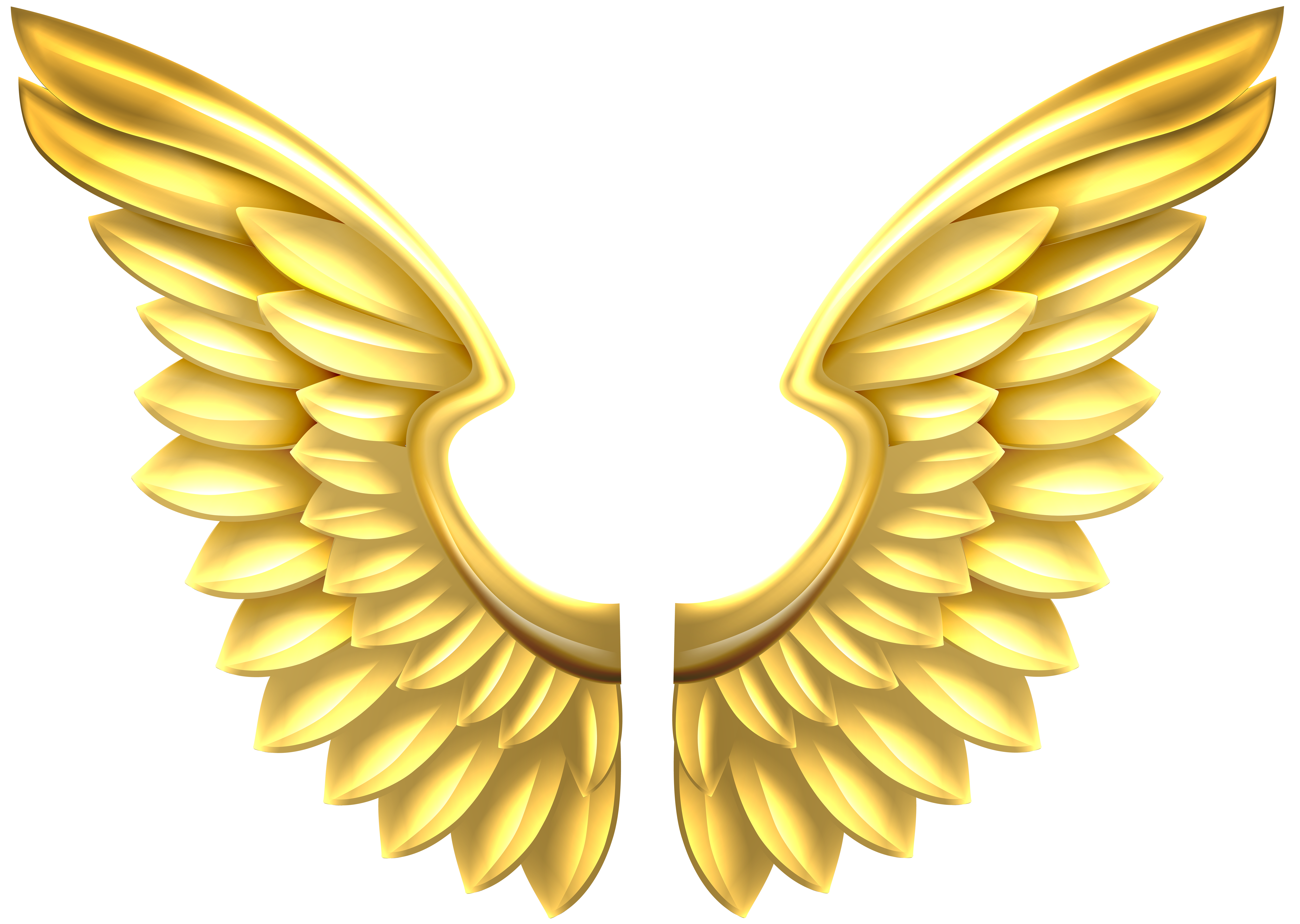 Anel trying to fly clipart clipart images gallery for free.