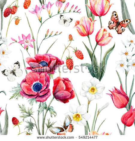 Anemone Flower Stock Images, Royalty.