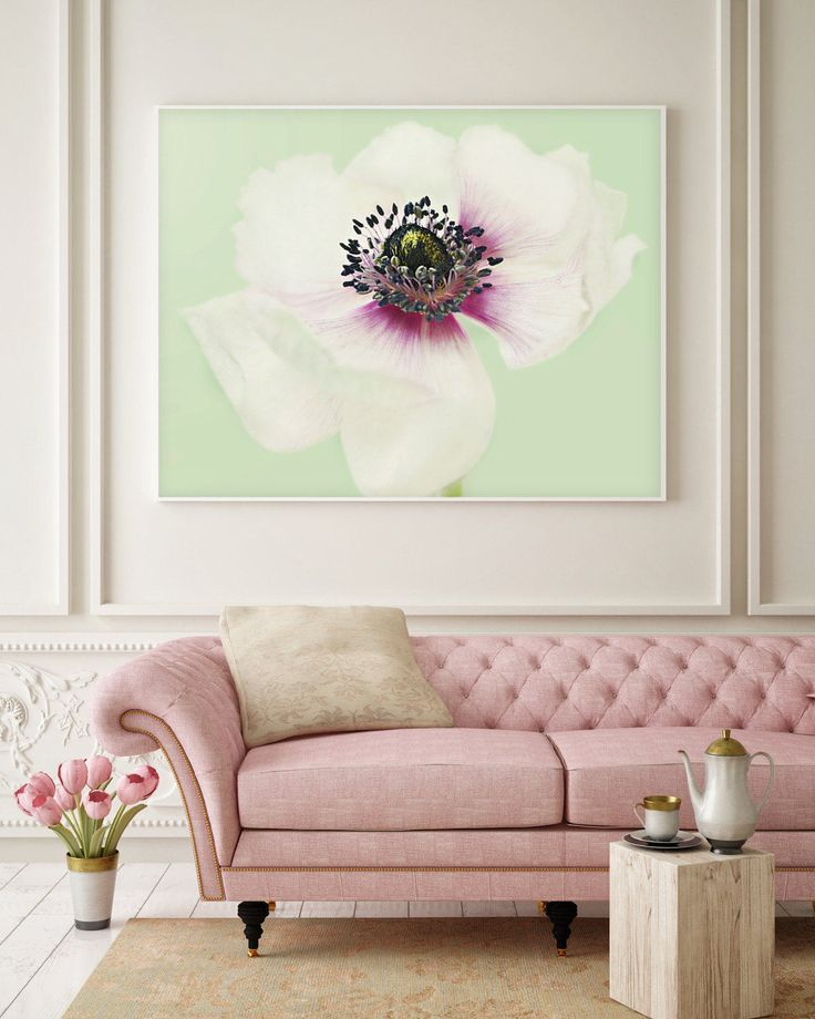 1000+ ideas about Anemone Flower on Pinterest.