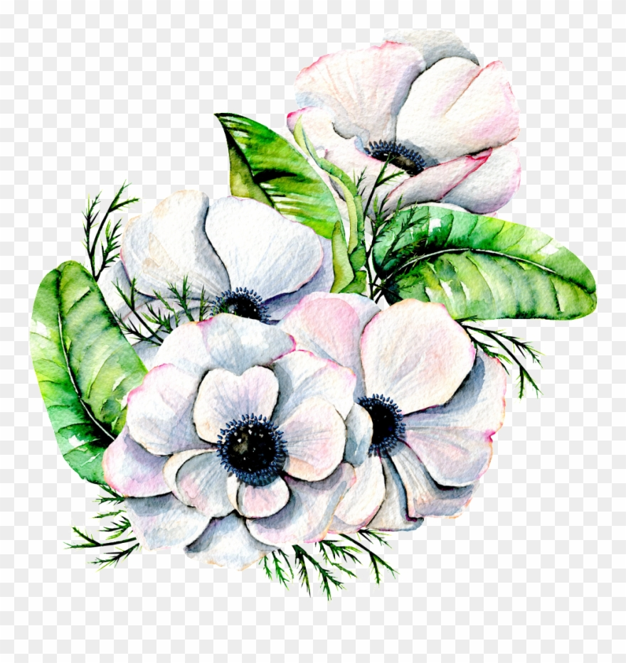 Hand Painted Elegant White Flower Png Transparent.