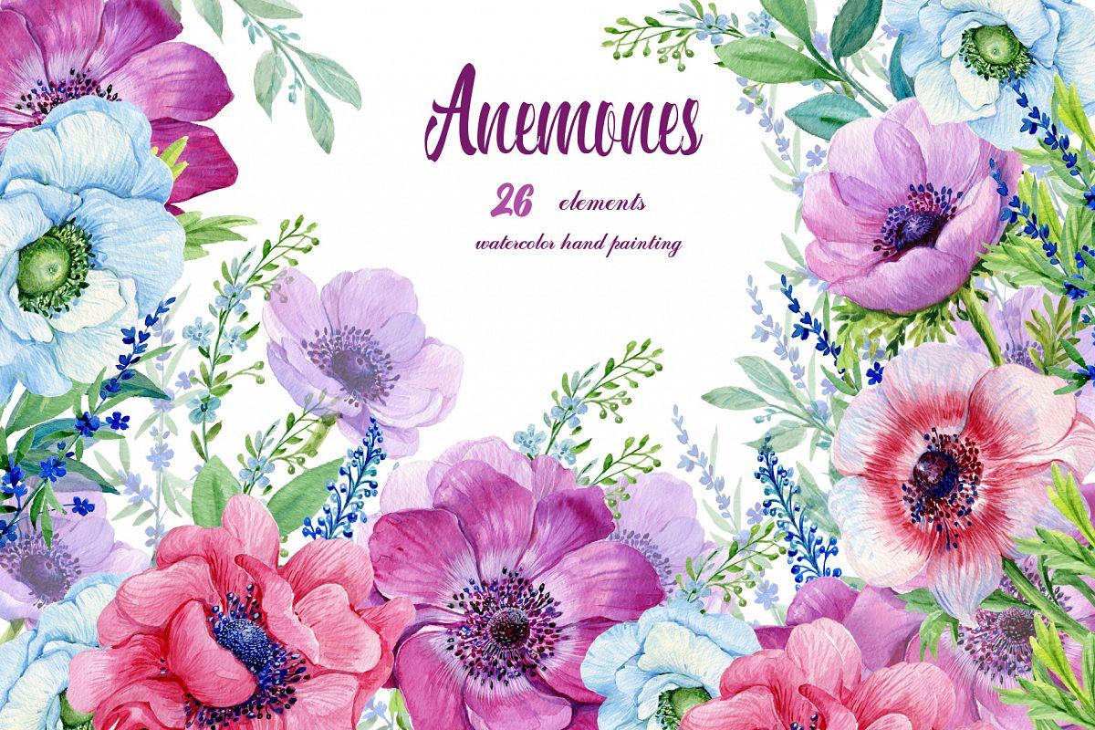 Anemones Watercolor . Flowers Clipart . Floral Elements.