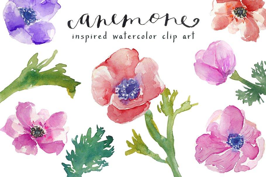 Watercolor Anemones Clip Art ~ Illustrations ~ Creative Market.