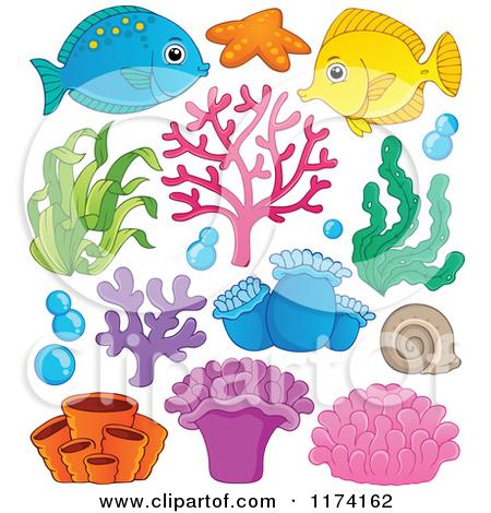 Clipart of Purple Sea Anemones.