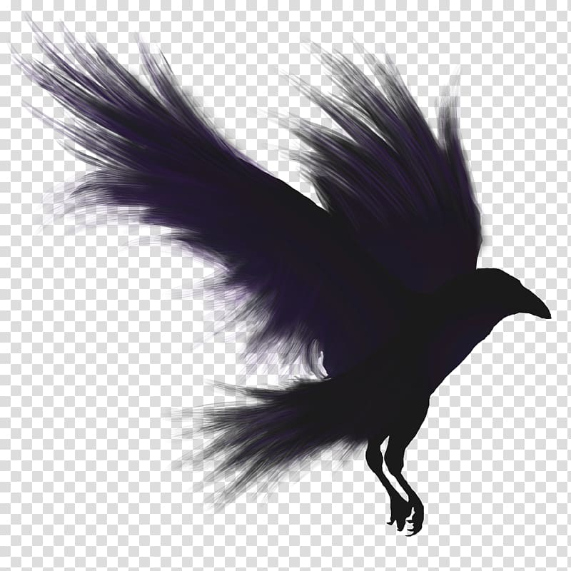 Angel black crow clipart clipart images gallery for free.