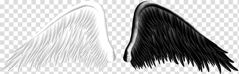 Good and Evil Angel Wings transparent background PNG clipart.