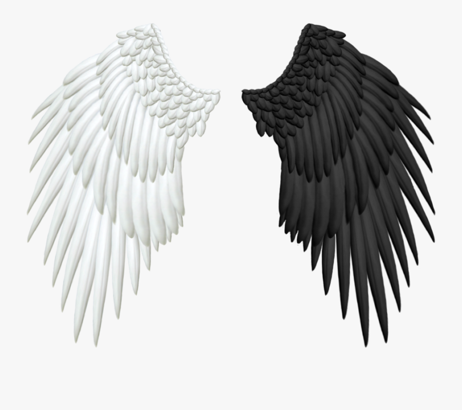 Good And Evil Angel Wings Png.