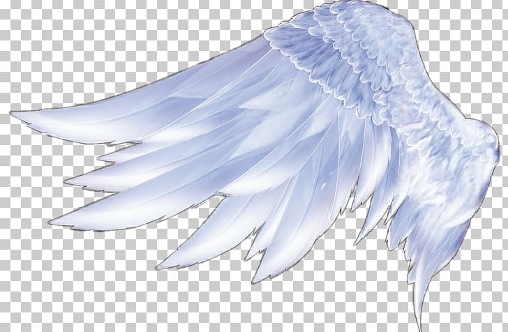 Angel Wings Angel Wings Feather PNG, Clipart, 3d Computer.