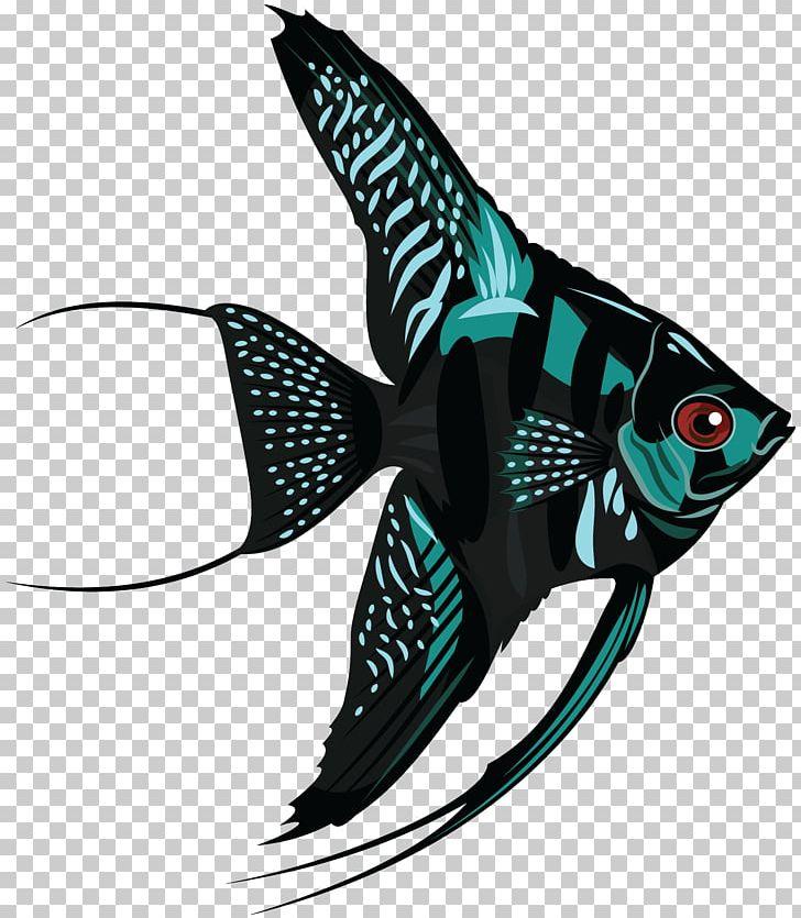 Freshwater Angelfish PNG, Clipart, Angelfish, Animals.