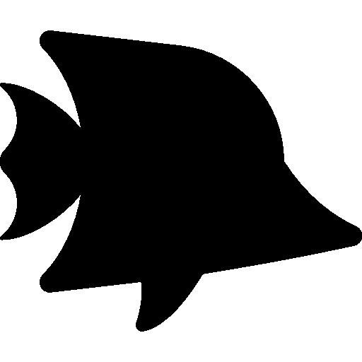 Angelfish Tropical fish Aquarium Clip art.