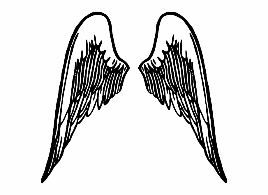 Wings Feather Free Vector Graphic On Pixabay.