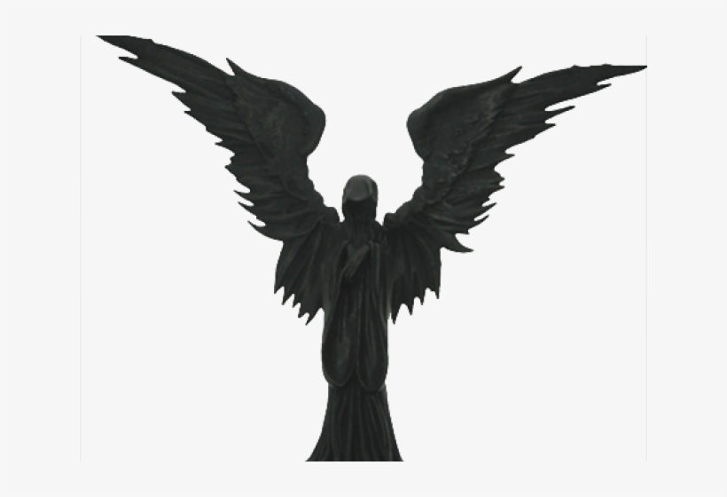 Angel Of Death Bird Transparent PNG.