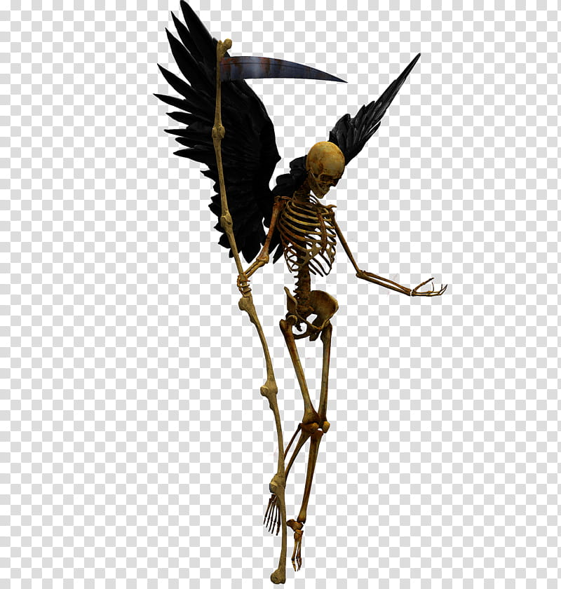 E S Angel of death, skeleton with black wings transparent background.