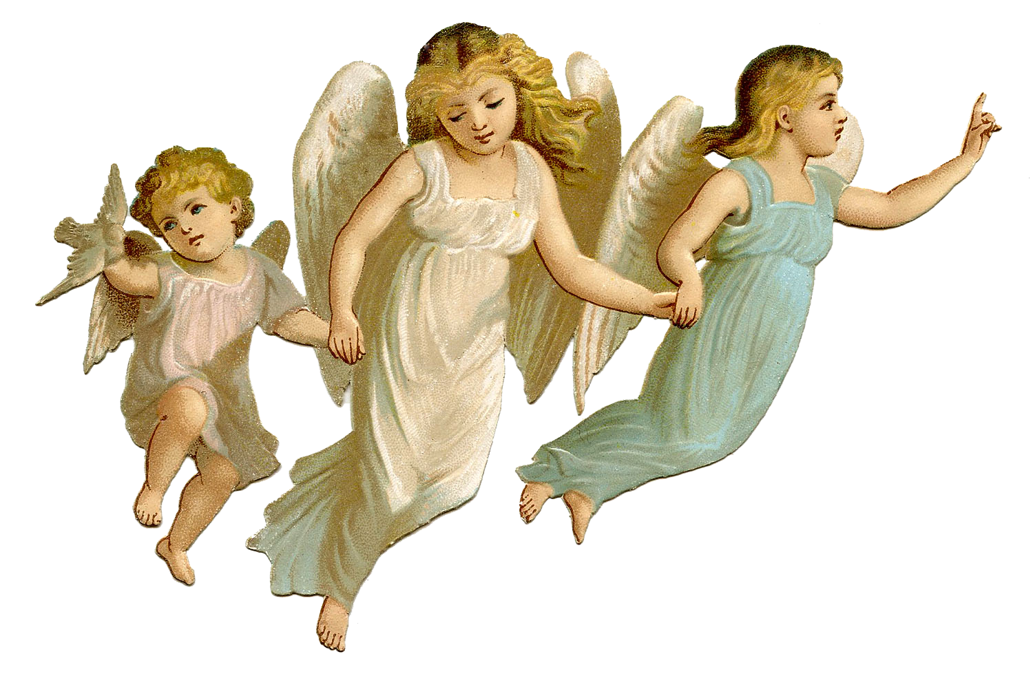 Angel PNG Picture.