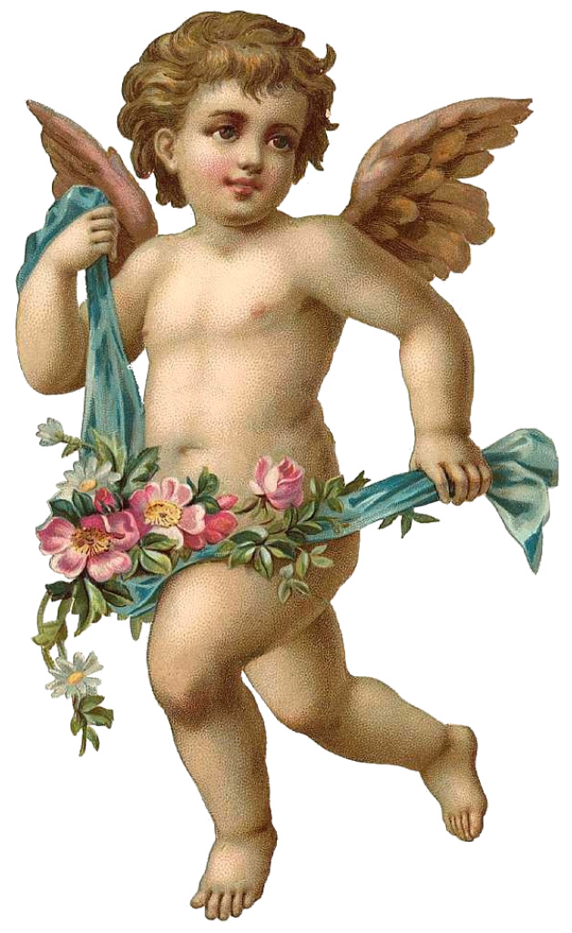 Angel PNG Transparent Images, Pictures, Photos.