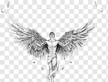 Wings illustration, Sleeve tattoo Wing Tribe Lower.