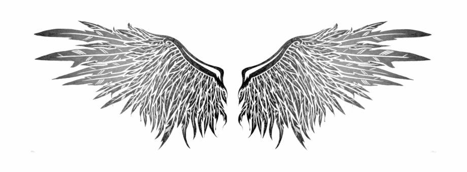 Angel Wings Png Transparent.