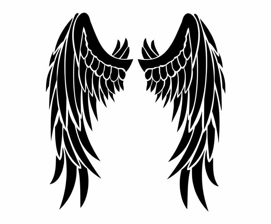 Angel Wings Feathers Transparent Png Stickpng Pertaining.