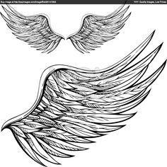 angel wing drawings side view.