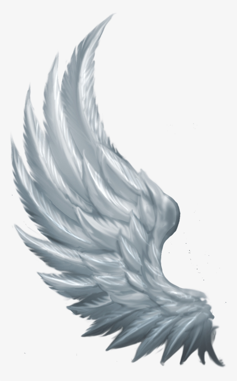 Side Angel Wings Png PNG Image.