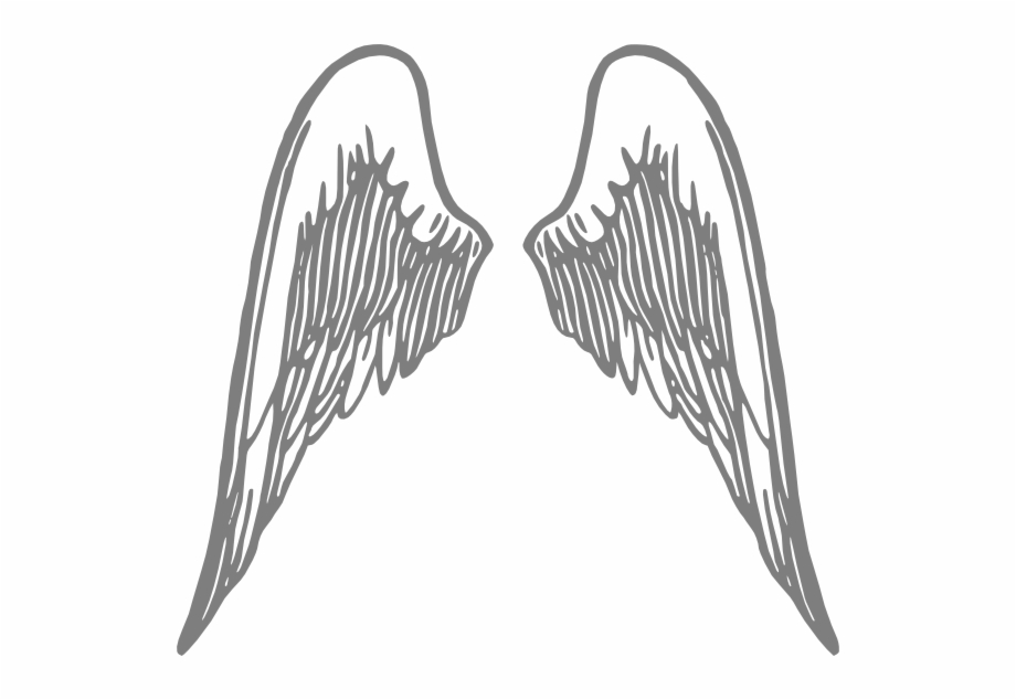 Angel Wings Grey Png.