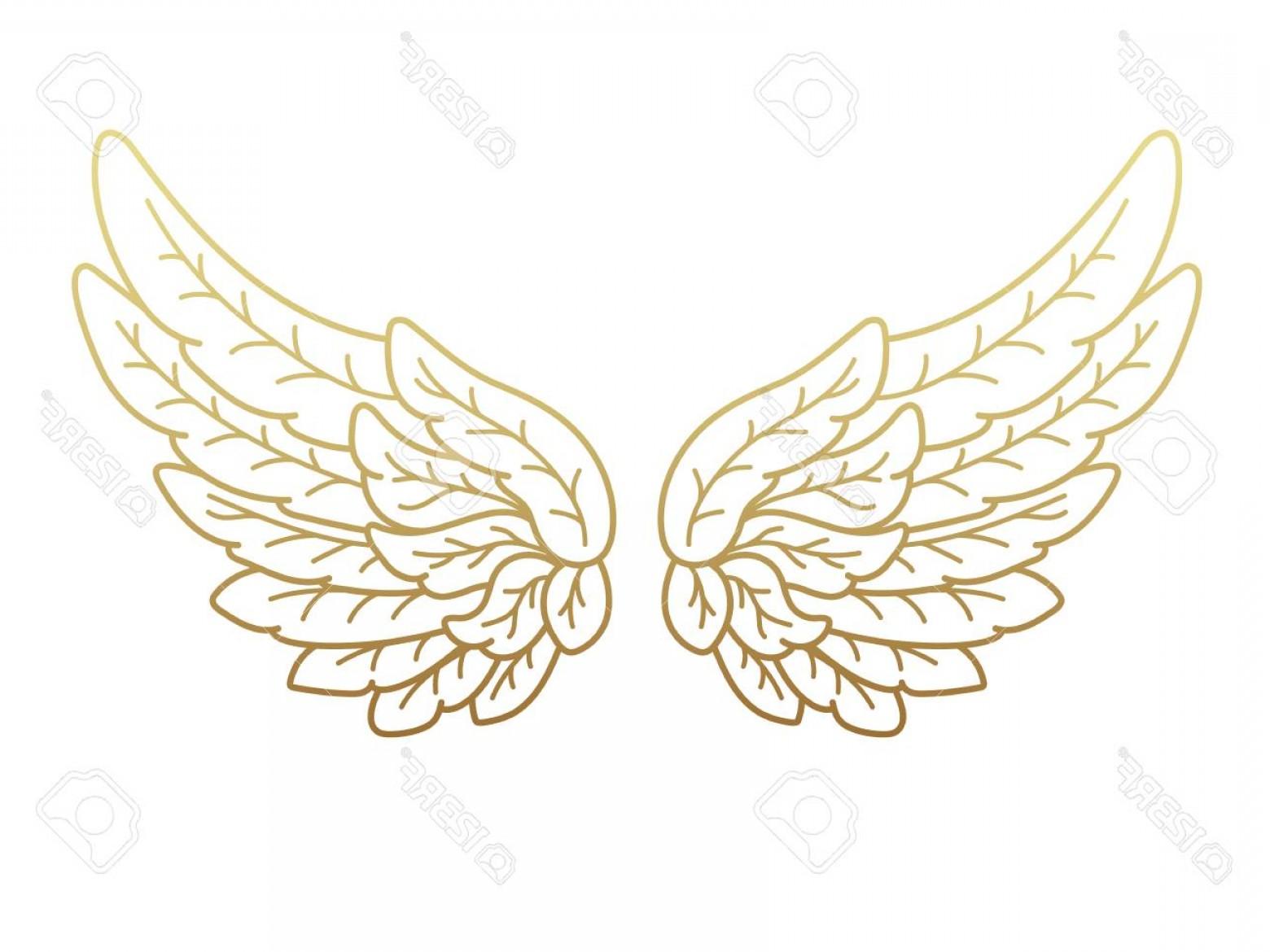 Gold Angel Wing Vector Art.