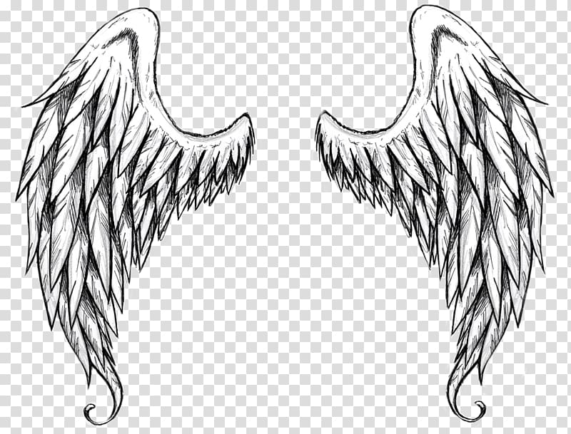 Drawing Outline Angel , angel transparent background PNG.