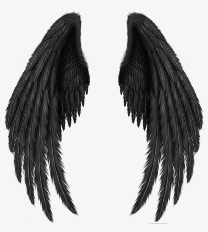 Black Wings Png.