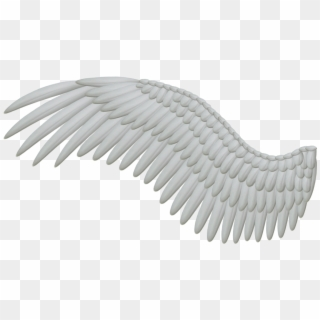 Angel Wings PNG Images, Free Transparent Image Download.