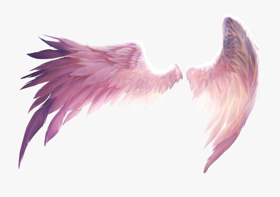 Transparent Angel Wings Png.