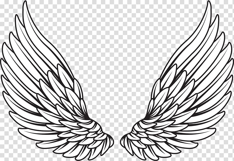 Pair of white wings illustration, Drawing , wings angel transparent.