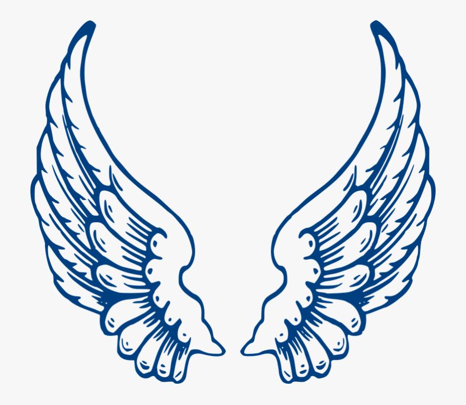 Angel, Wings, Blue, Feathers, Spread.