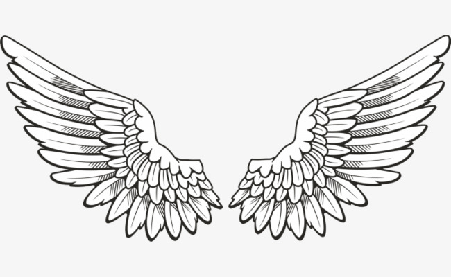Hand Painted Angel Wings, Angel Clipart, Wings Clipart, Wing PNG.