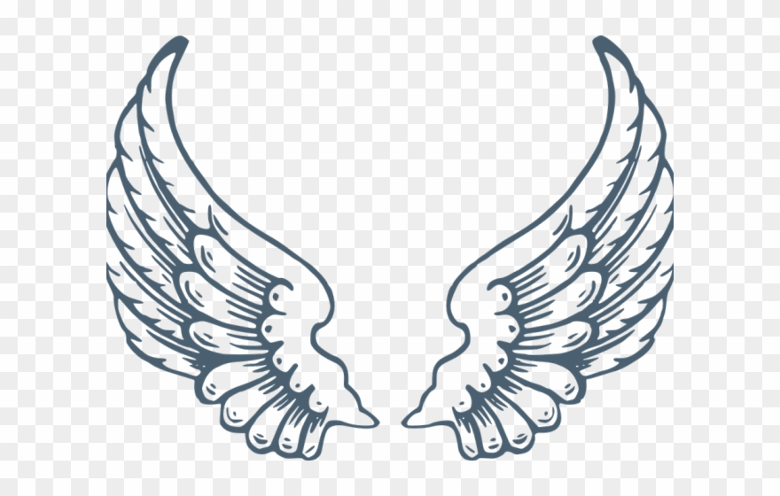 Wings Clipart Clear Background.