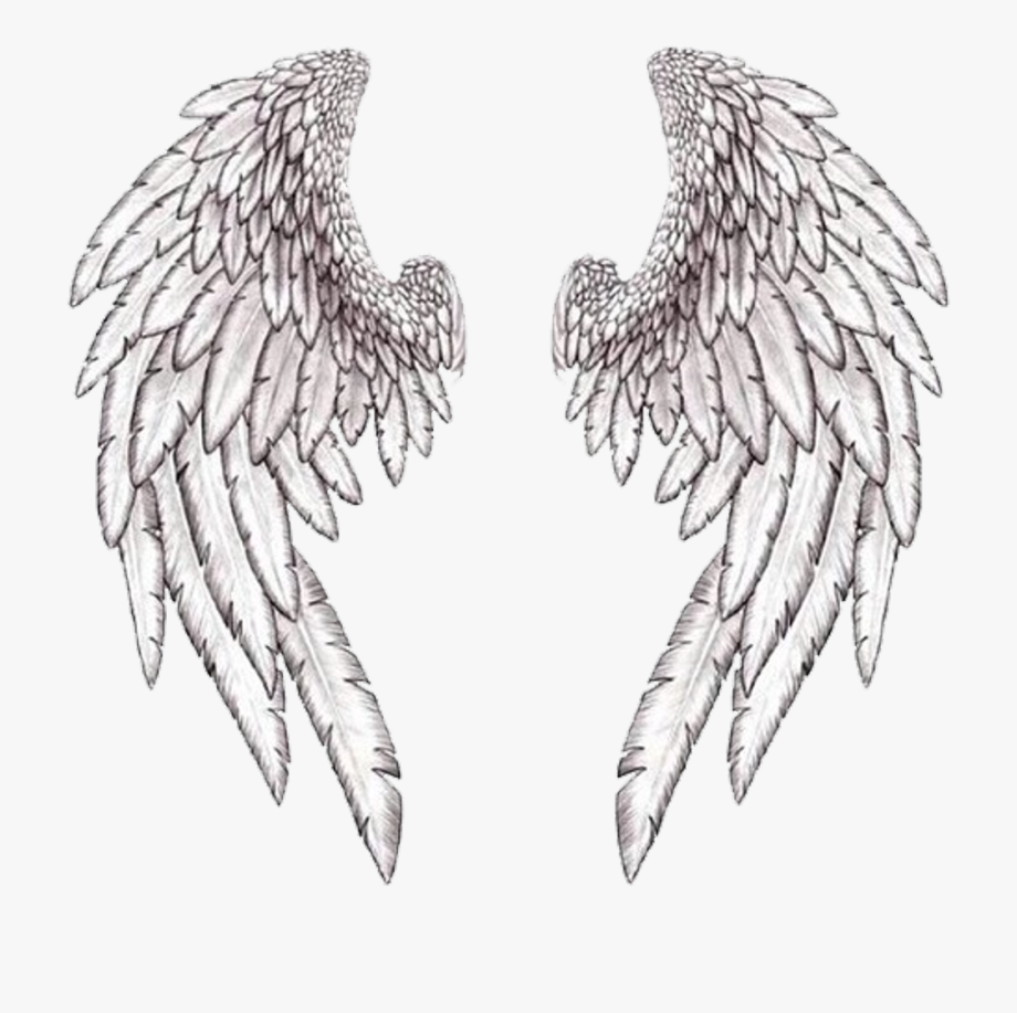 Excelent Angel Wings Tumblr Download Free Clipart With.