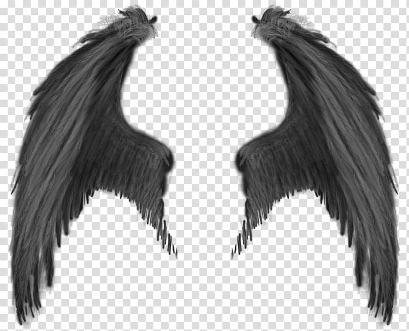 Black wings illustration, Demon Angel Devil, wing.