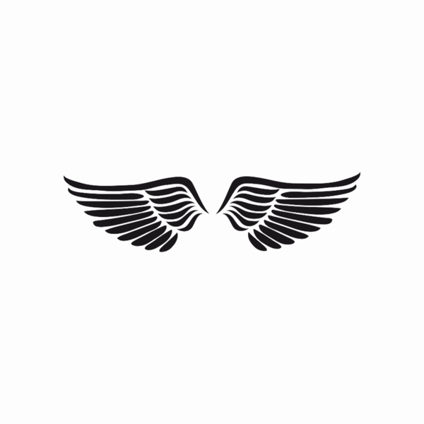 Angel Wing Png (+).